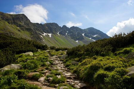 boulders: Mountain Track with Boulders Stock Photo