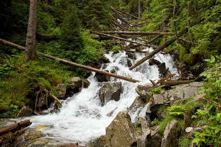 boulders: Mountain River Waterfall with Trunk Trees and Boulders