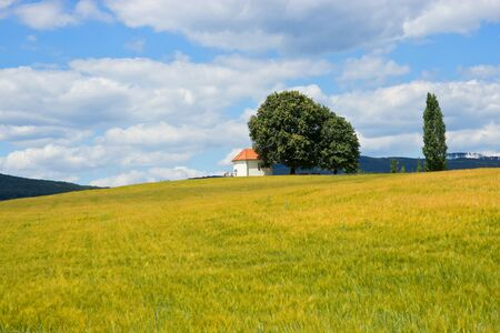 panoramatic: Lonely Chapel on Hill Covered by Crop Stock Photo