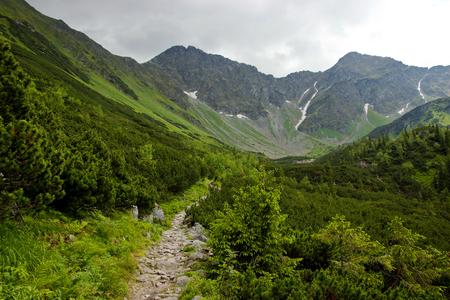 Bergpad naar snoeken en heuvels