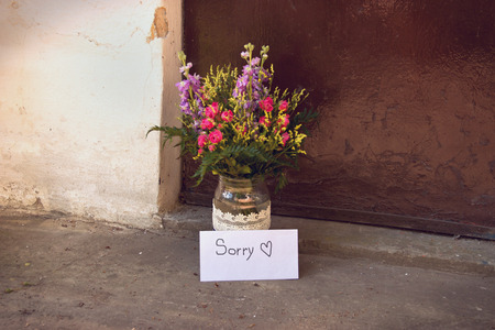 apology: Apology Letter with Flowers