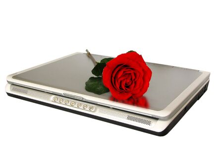 red rose on top of laptop Stock Photo