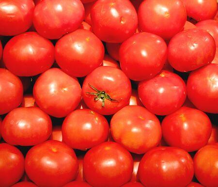 많은 토마토 한가운데에 토마토