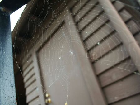 spider web with wood door on the back