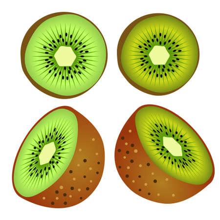 vector of four kiwifruit that has been split