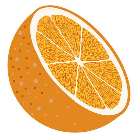 vectored slices of fresh florida orange