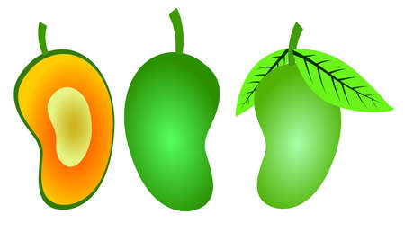 vector with four simple mango designs  イラスト・ベクター素材