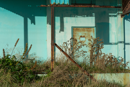 Detail of door overgrown with weeds at abandoned factory near New Plymouth_New Zealand