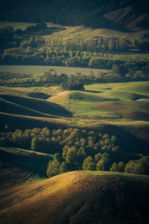 te: Famland dotted with Poplars and other trees forming windbreaks viewed from Te Mata Peak in Hawkes Bay_New Zealand.