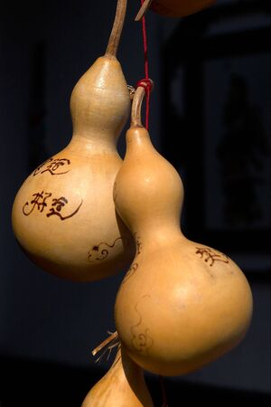 dried gourd: chinese script