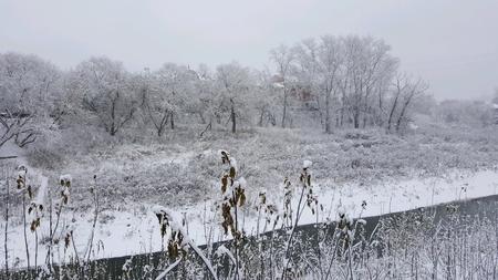 Siberia landscape in winter 写真素材