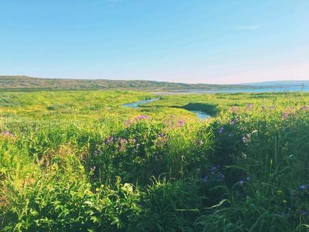 Nothern river landscape in Russia 版權商用圖片