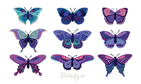 butterfly in hand: Set of butterflies decorative silhouettes. Vector illustration Stock Photo