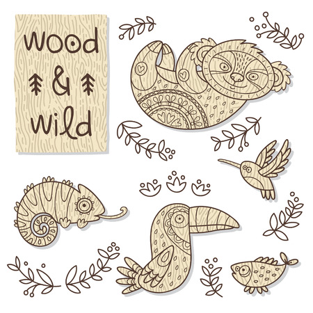 wooden toy: Vector organic wooden toy. Koala, hummingbird, toucan, chameleon and fish in vector Illustration
