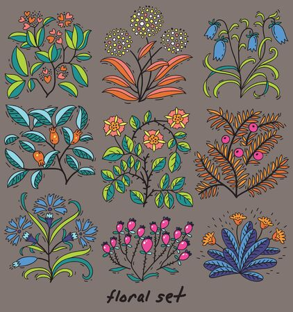 thorn bush: Vector cute hand drawn floral set in doodle style
