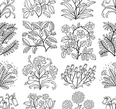 thorn bush: Hand drawn floral background in doodle style. Vector seamless pattern Illustration