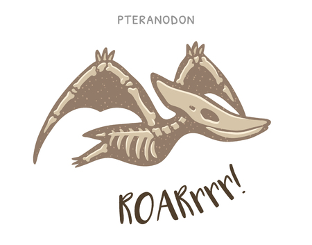 pteranodon: Cartoon card with a pteranodon skeleton and text Roar. Fossil of a pteranodon dinosaur skeleton. Cute dinosaur on white background