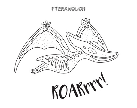 fossil: Pteranodon skeleton outline drawing. Fossil of a pteranodon dinosaur skeleton. Coloring book page Illustration