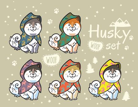 カラフルなレインコートでかわいいシベリアハスキー子犬のコレクション。犬の異なる品種。秋田犬、芝犬、マラミュート