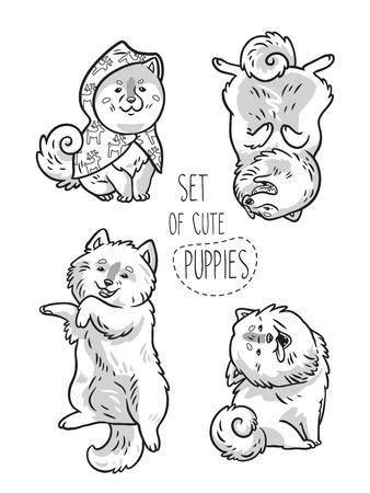 Set of ink husky and samoyed puppies. Vector illustration Illustration
