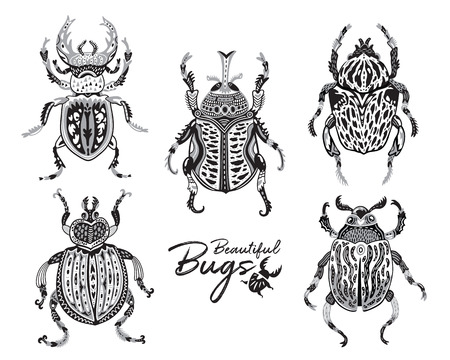 Set of ornamental bugs in monochrome colors. Vector illustration