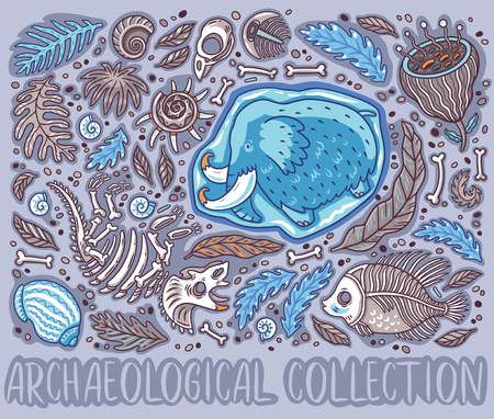 Collection of cartoon Triceratops fossil, mammoth in ice, ancient ammonites ferns, trilobite, leaves and rocks. Illustration