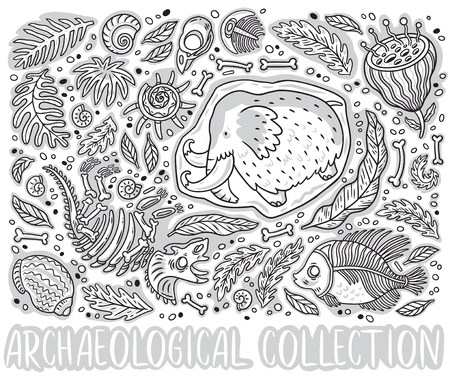 Black and white collection of cartoon Triceratops fossil, mammoth in ice, ancient ammonites ferns, trilobite, leaves Illustration