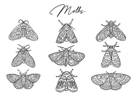 Collezione di farfalle e falene di inchiostro. Illustrazione vettoriale disegnato a mano. Ideale per colorare la stampa