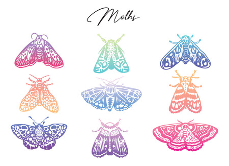 Colorful gradient moth set. Abstract butterflies, trendy gradient. Vector illustration