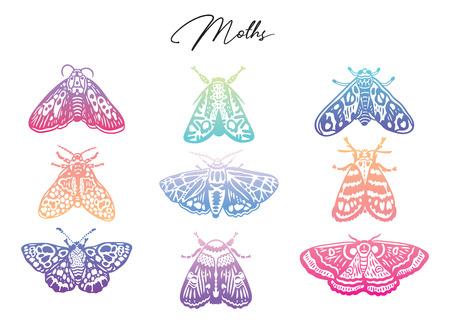 Kleurrijke kleurovergang nachtvlinder set. Abstracte vlinders, trendy verloop. Vector illustratie Vector Illustratie