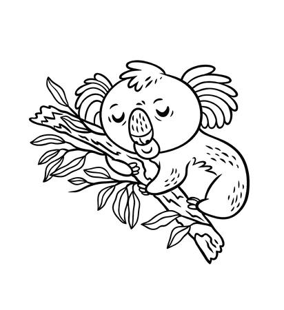 Sleeping koala on eucalyptus tree. Black and white vector illustration. Cartoon style
