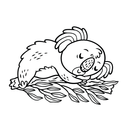 Koala relaxing in a tree. Black and white vector illustration. Cartoon style Illustration