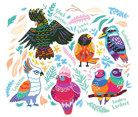 Collection of Australian Birds in vector, cartoon style
