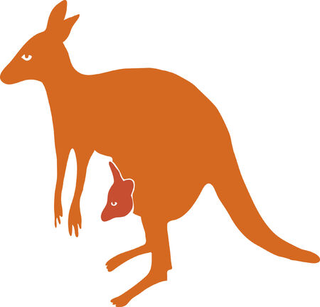 Vector kangaroo, is isolated on a white background