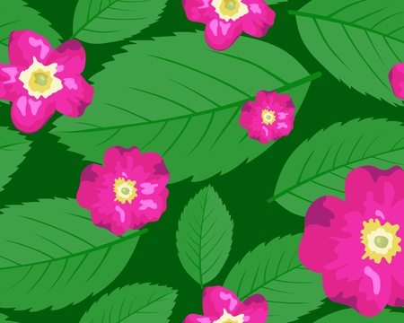 The dogrose leaves and flowers seamless background Stock Vector - 9214413