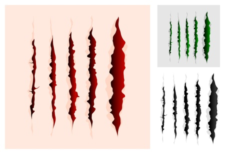 Slashes collection Vector