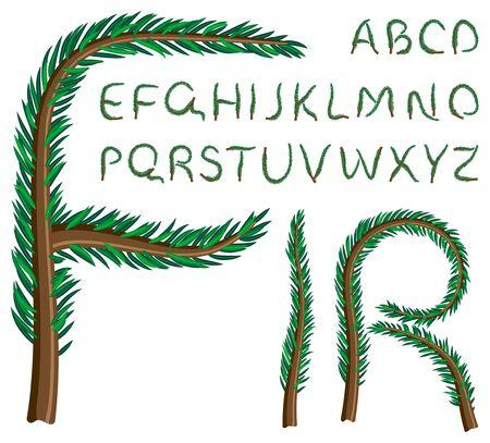pine needle: 004(17).jpg