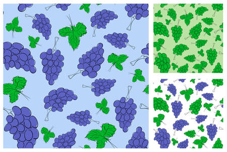 Green and purple grape seamless background collection Stock Vector - 12837444