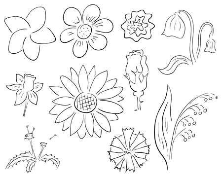 Vector primitive black and white contour flowers collection Vector