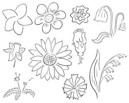 Vector primitive black and white contour flowers collection