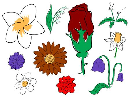 Vector primitive flowers collection on the white background Stock Vector - 13522331