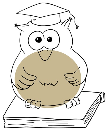 Vector owl on the book on a white background Vector