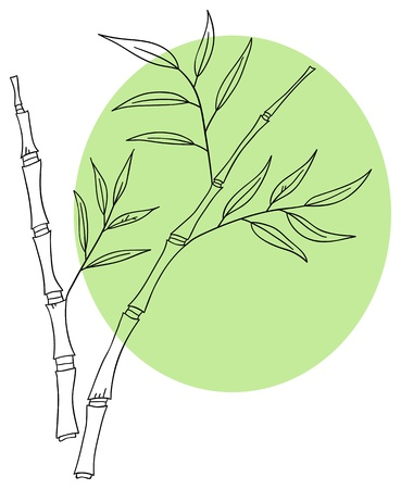 Vector bamboo sprigs on a pastel green background Vector