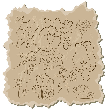 Flowers collection on a brown cardboard background Vector