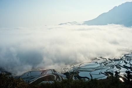 China Yunnan, Yuanyang terraced color photo
