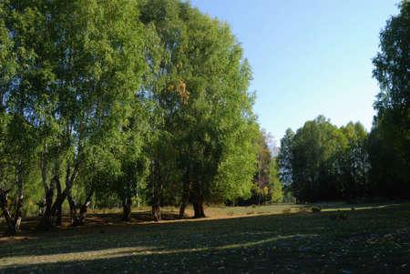 xinjiang: Xinjiang, en Chine, les herbes d'automne et de la ville Banque d'images