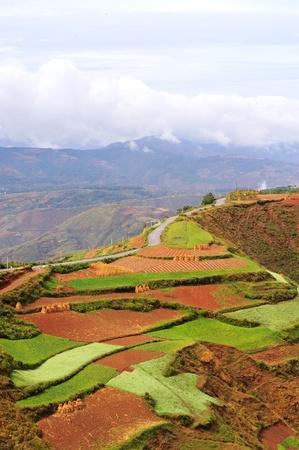 Red land, yunnan province, China