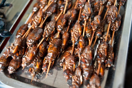 the local characteristics: Fried insect, China local snacks