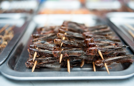 Fried insect, China local snacks  photo