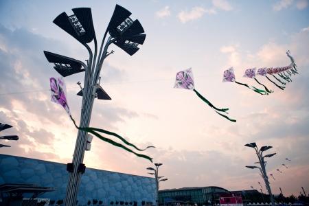 piscina olimpica: Local de Pek�n nacional de nataci�n centro, cubo de agua